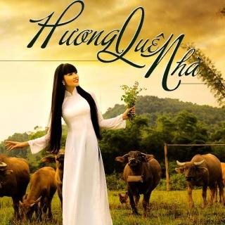 Hương Quê Nhà - Various Artists
