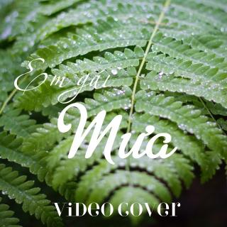 Em Gái Mưa (Video Cover List) - Various  Artists