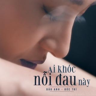 Ai Khóc Nỗi Đau Này (Single) - Bảo Anh