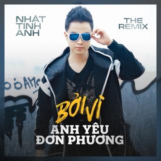 Bởi Vì Anh Yêu Đơn Phương (The Remix 2018) - Nhật Tinh Anh