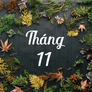 Tháng 11 Lá Tàn - Various Artists