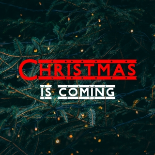 Christmas Is Coming - Various Artists