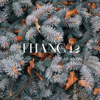 Tháng 12 Lạnh Giá - Various Artists