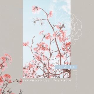 The Album - Shawn Mendes