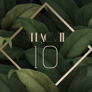 Nhạc Vip 10 - Various Artists, Various Artists, Various Artists 1