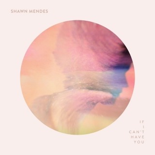 If I Can't Have You (Single) - Shawn Mendes