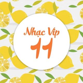 Nhạc Vip 11 - Various Artists, Various Artists, Various Artists 1