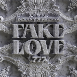 Fake Love - Delany