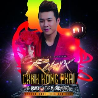 Cánh Hồng Phai (Remix Single) - Ngô Viết Trung