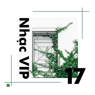 Nhạc Vip 17 - Various Artists, Various Artists, Various Artists 1