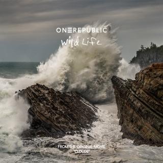 Wild Life (Single) - One Republic