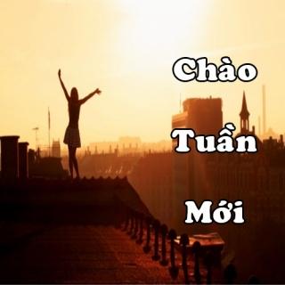 Chào Tuần Mới  - Various  Artists