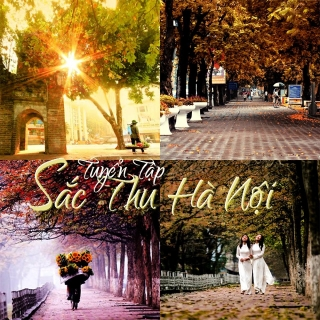 Tuyển Tập Sắc Thu Hà Nội - Various  Artists