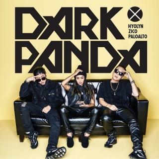 Dark Panda - Hyorin (Sistar), ZICO (Block B)
