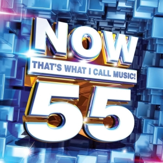 NOW That's What I Call Music, Vol.55 - Various Artists