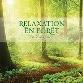 Relaxation En Foret - Stuart Jones