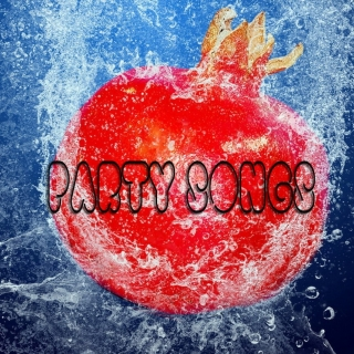 Party Songs - Various Artists