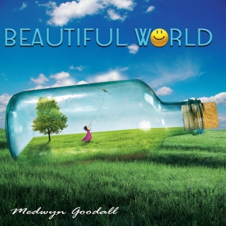 Beautiful World - Medwyn Goodall