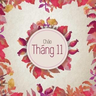 Chào Tháng 11 - Various Artists