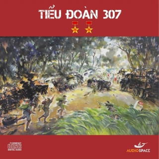 Tiểu Đoàn 307 (Single) - Thụy VânHuy Anh
