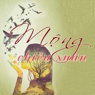Mộng Chiều Xuân (Tuyển Tập Trữ Tình) - Various Artists