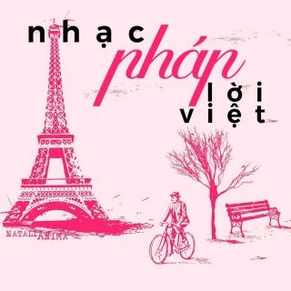 Những Ca Khúc Nhạc Pháp Lời Việt Hay Nhất - Various Artists