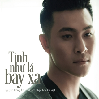 Tình Như Lá Bay Xa - Nguyễn Hồng Ân