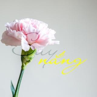 Say Nắng - Various  Artists