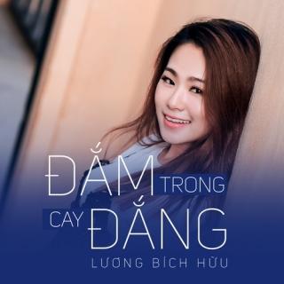 Đắm Trong Cay Đắng (Single) - Lương Bích Hữu