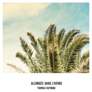 Allongés dans l'herbe - Thomas Dutronc