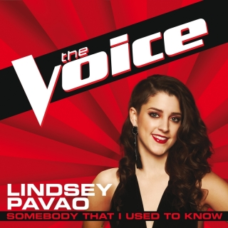 Somebody That I Used To Know - Lindsey Pavao