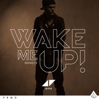 Wake Me Up - Avicii