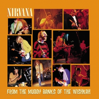 From The Muddy Banks Of The Wi - Nirvana