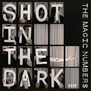Shot In The Dark - The Magic Numbers