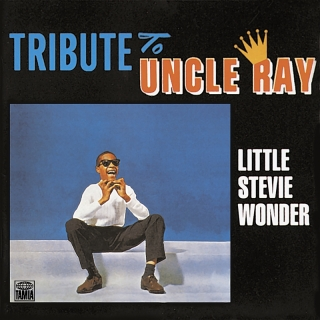 Tribute To Uncle Ray - Stevie Wonder