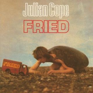 Fried - Julian Cope