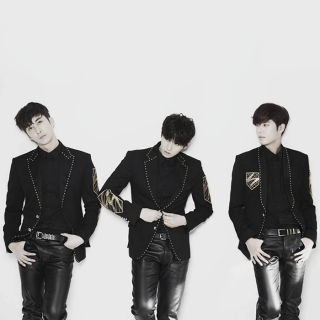 Double S 301 (SS301)