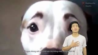 Thịt Chó Không Ngon Đâu (Huy JOo Chế) - Huy JOo