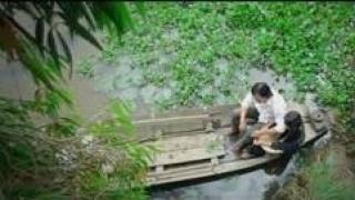 Hoàng Hôn Màu Tím - Long Hồ