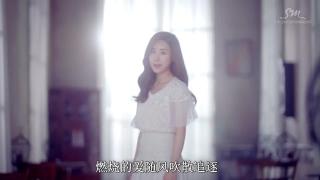 Not Alone - Zhan Li Yin