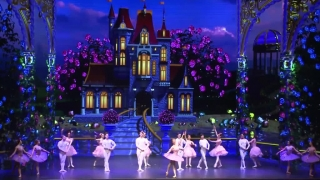 Ballet Kẹp Hạt Dẻ (The Nutcracker Ballet) - Various Artists