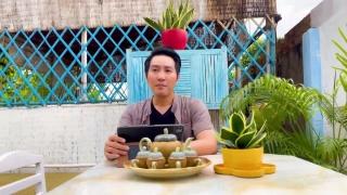 Nghĩa Mẹ Tình Cha - Nguyễn Phi Hùng