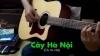 Cây Hà Nội (Chị Tôi Chế) - Various Artist