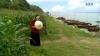 Tiếng Mẹ Ru - Tân Nhàn